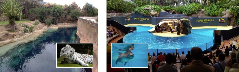 Chlorine Alternative For Residential Pools 4 Earth Friendly Alternative Pool Water Treatments